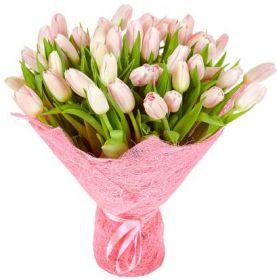 Тюльпаны розовые 51 шт