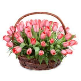 Корзина из 51 тюльпана