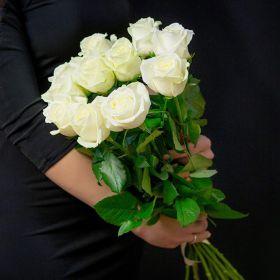 Роза Белая (от 11 шт.)