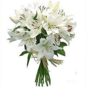 Букет из 19 белых лилий