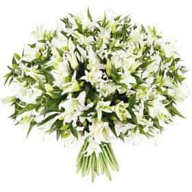 Букет из 51 белой лилии