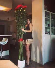 Розы гиганты 25 штук 220см