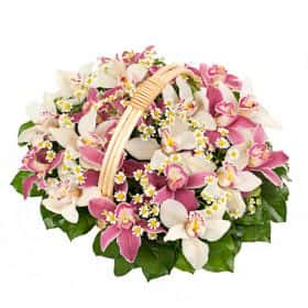 Корзина «Орхидеи и ромашки»