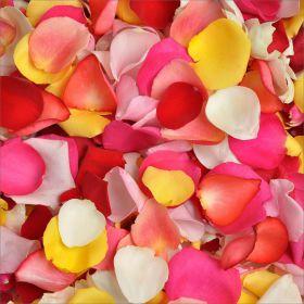 """Лепестки роз """"Любые цвета"""""""