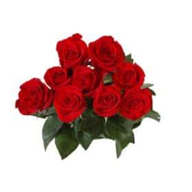 9 длинных роз 130 см