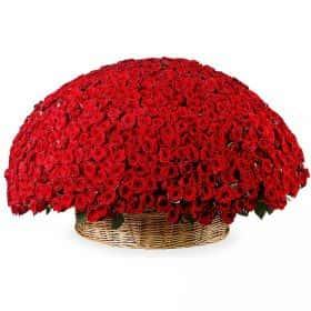 Двадцатый век (1001 роза в корзине)