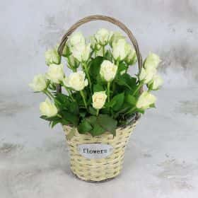25 белых роз 40 см. в корзине Cтандарт