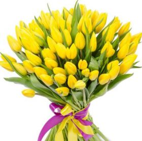 Тюльпаны желтые 75 шт
