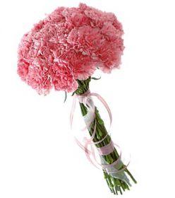 25 розовых гвоздик