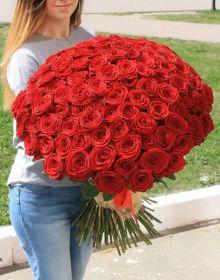 75 Красных роз, высота 1 метр
