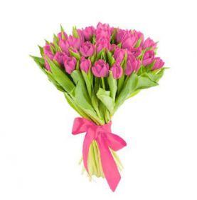 Розовые тюльпаны 25 шт