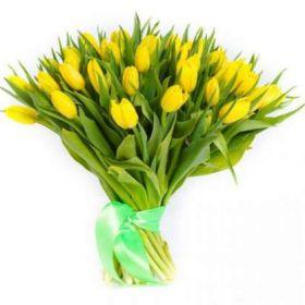 Тюльпаны желтые 51 шт