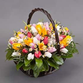 Корзина тюльпанов «Яркие краски»