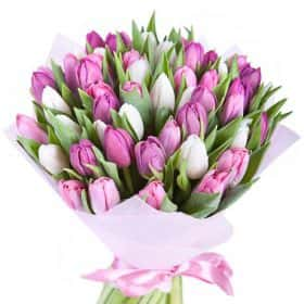 Букет из 51 тюльпана «Весенний поцелуй»