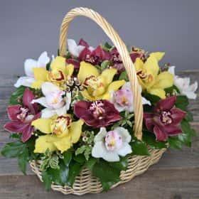 Корзина «Сладкие орхидеи»