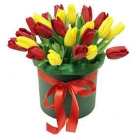 Коробочка с тюльпанами 25 см.